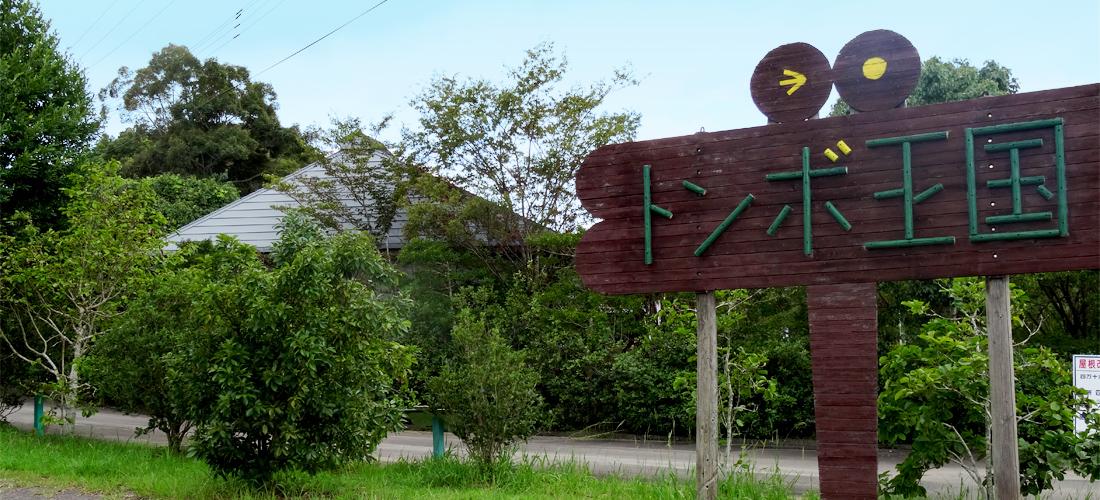 トンボ自然公園 | 一般社団法人 ...